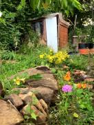 Allotment and upcycled shed