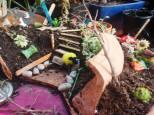 fairy garden attempt 1